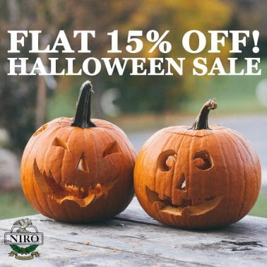 Special Halloween Sale at Niro Fashion