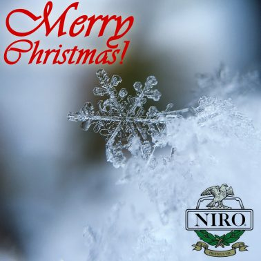 Merry Christmas Everyone from Us All at Niro Fashion