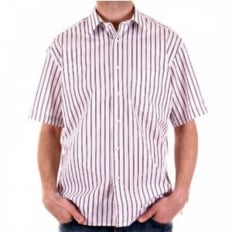 White with Plum and Grey Stripes Short Sleeved Shirt