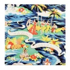 Hardback Aloha Project Book with History of Hawaii, The Land of Aloh Shirt in Japanese Text SS01880